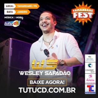 WS tamandare fest 2016