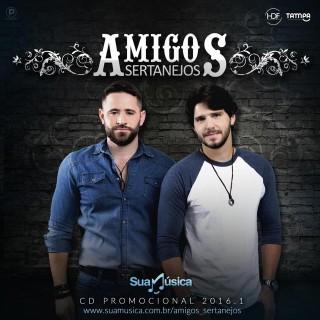 amigos sertanejos 2016